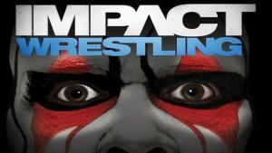 TNA-Tour-2012-760x1024