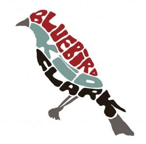 Bluebird-1